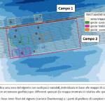 Localizzazione delle parcelle sperimentali